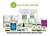 Antler Farms - 100% Pure New Zealand Organic Greens Superfood Powder, 50 Servings, 200g - Wheat Grass, Barley Grass, Chlorella, Spirulina - Vegan, Gluten Free, Chlorophyll Rich, for Energy and Detox