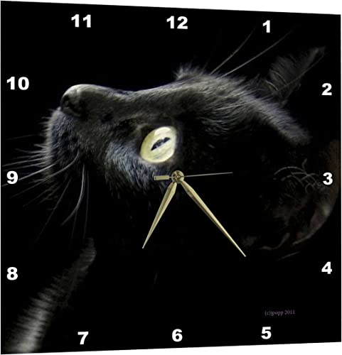 3dRose Black Cat Face – Wall Clock, 15 by 15-Inch DPP_23822_3