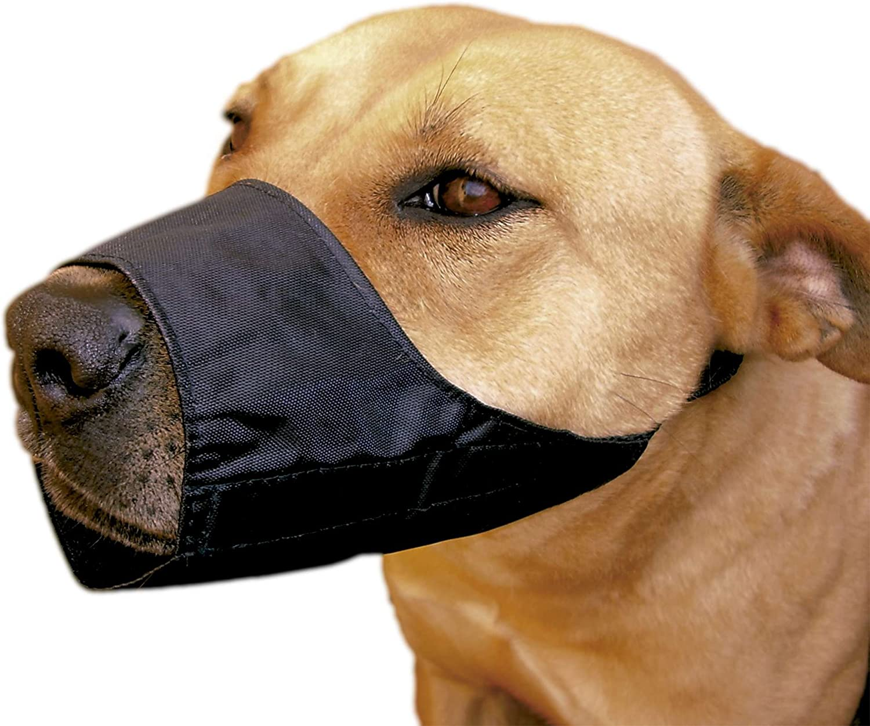 ICA DB931 Bozal de Nylon Ajustable para Las Razas Terrier, Caniche, Negro