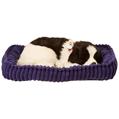 New Perfect Petzzz Border Collie Handcrafted In 100% Synthetic Materials Lots Of Love And Cuddles: Home & Kitchen