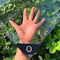 Dekzeil transparant waterdicht PVC plastic Tarp met ogen, bloem Plant Sheet Covers regendicht, 400g/m2