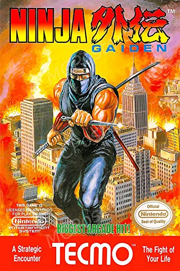 Amazon.com: PremiumPrintsG - Ninja Gaiden Original NES Box ...