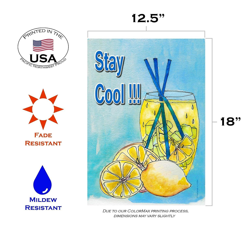"""/""""LEMONADE/"""" flag 3x5 ft polyester drink beverage food"""