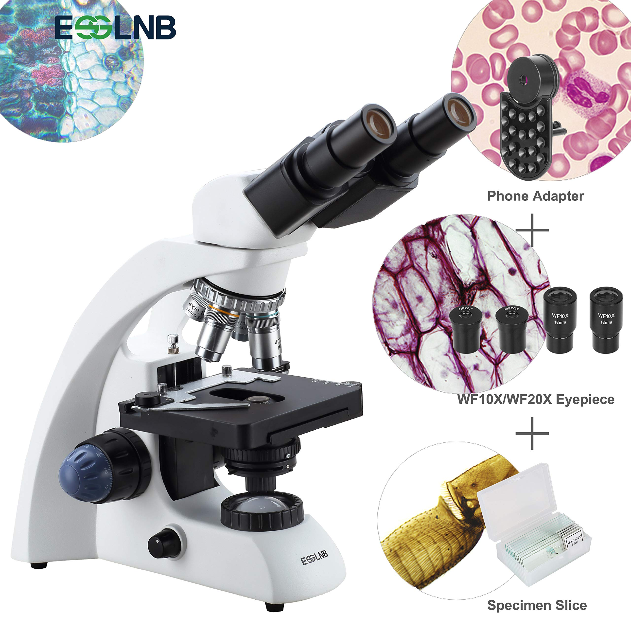 ESSLNB Binocular Microscope with Phone Adapter 2000X Compound Microscope with Slides LED Light Microscope with X-Y Double Layer Mechanical Stage NA1.25 Abbe Condenser Oil Immersion Objective by ESSLNB