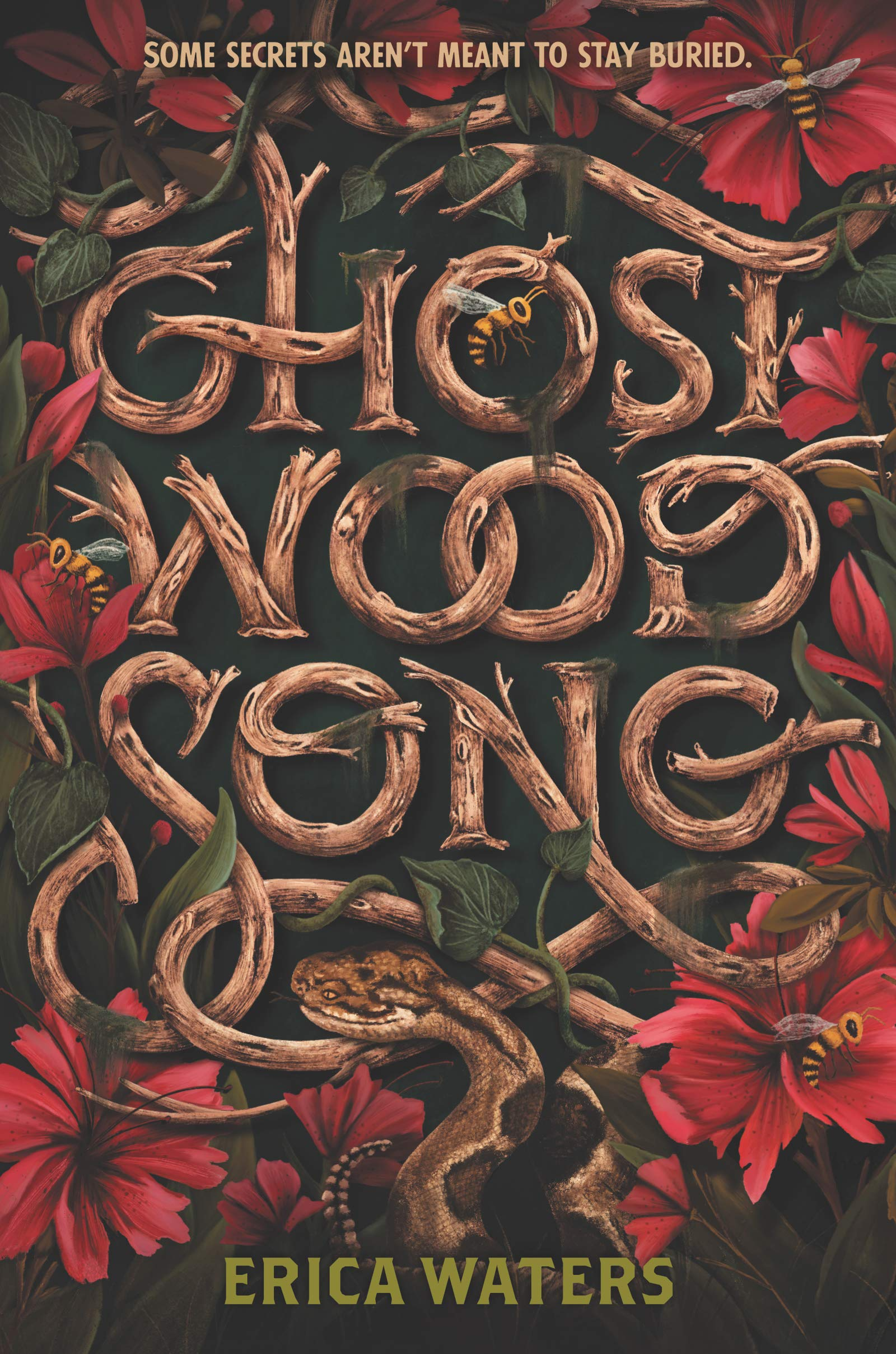 Amazon.com: Ghost Wood Song (9780062894229): Waters, Erica: Books