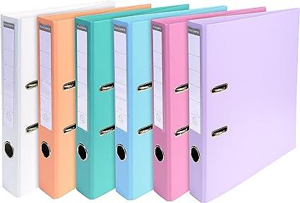 Exacompta 53044E - Carpeta (Conventional file folder, Caja de ...