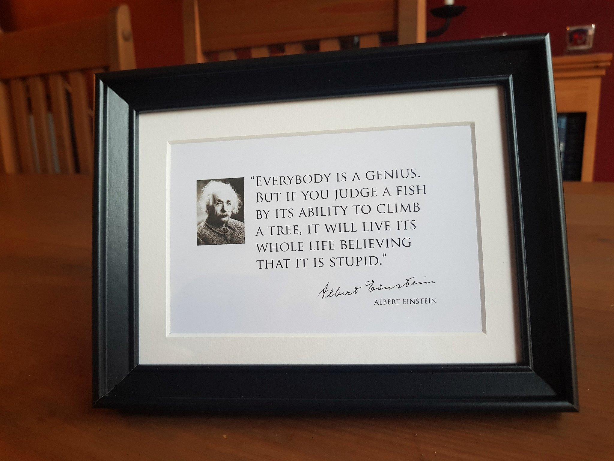 pr Everybody is a Genius - Einstein Quote Frame