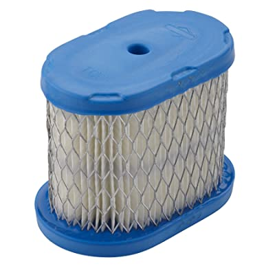 Briggs & Stratton 697029 Oval Air Filter Cartridge: Garden & Outdoor