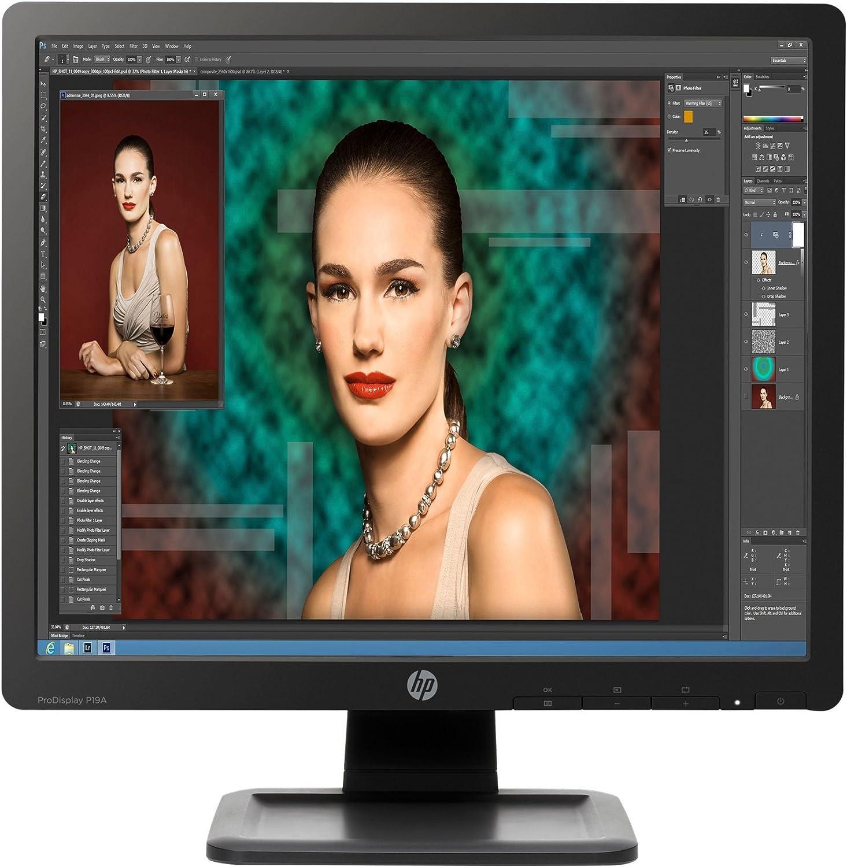 HP D2W67AA#ABA ProDisplay P19A 19'' LCD Monitor, Black