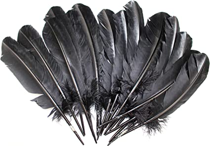 14 Pieces 5.5-7.5 Inches Light Colored Turkey Feathers