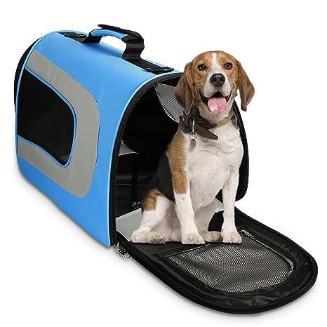 WOT I - Transportín para Mascotas, transportador de Gatos, para Perros, con Airline