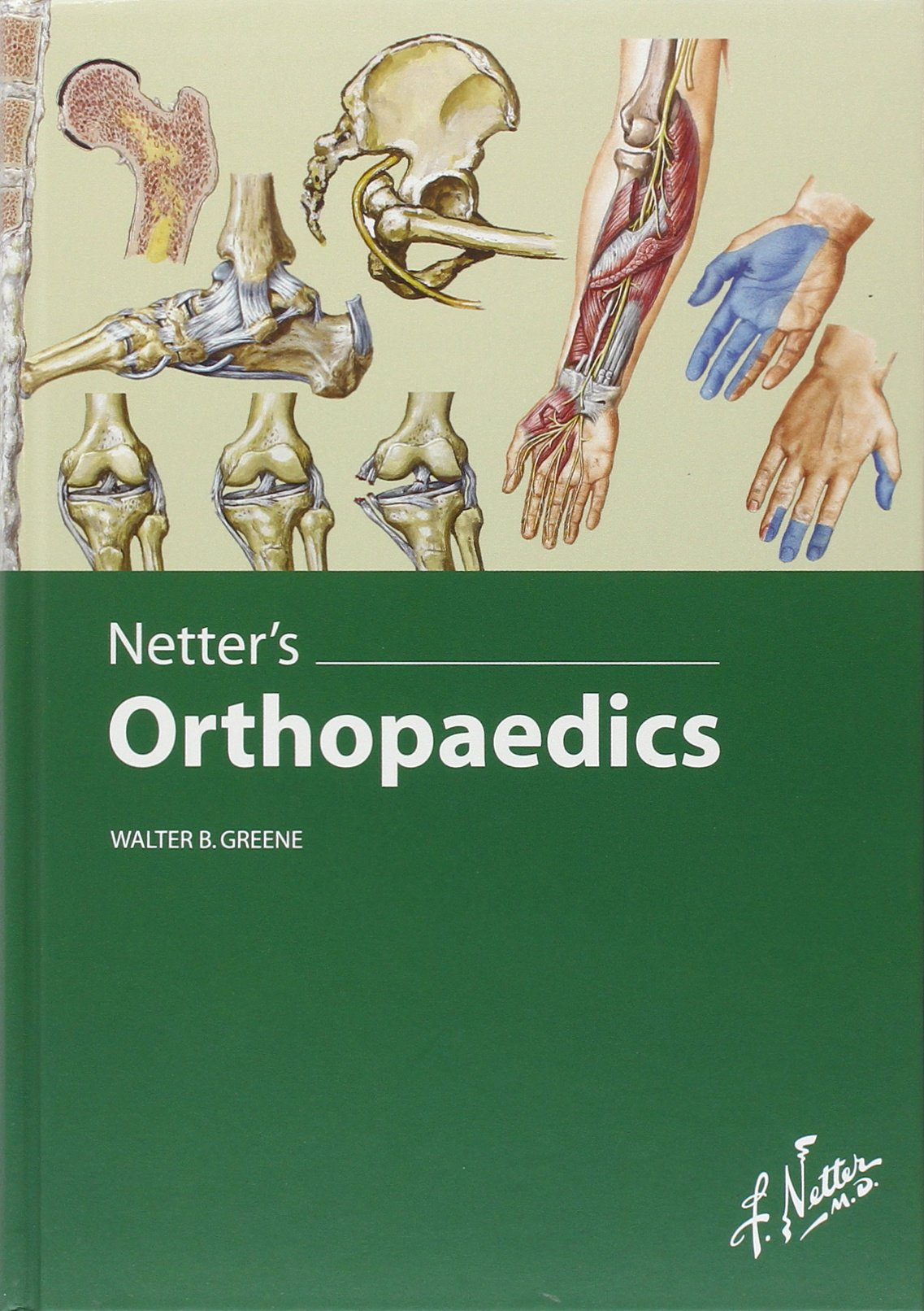 Buy Netter\'s Orthopaedics (Netter Clinical Science) Book Online at ...