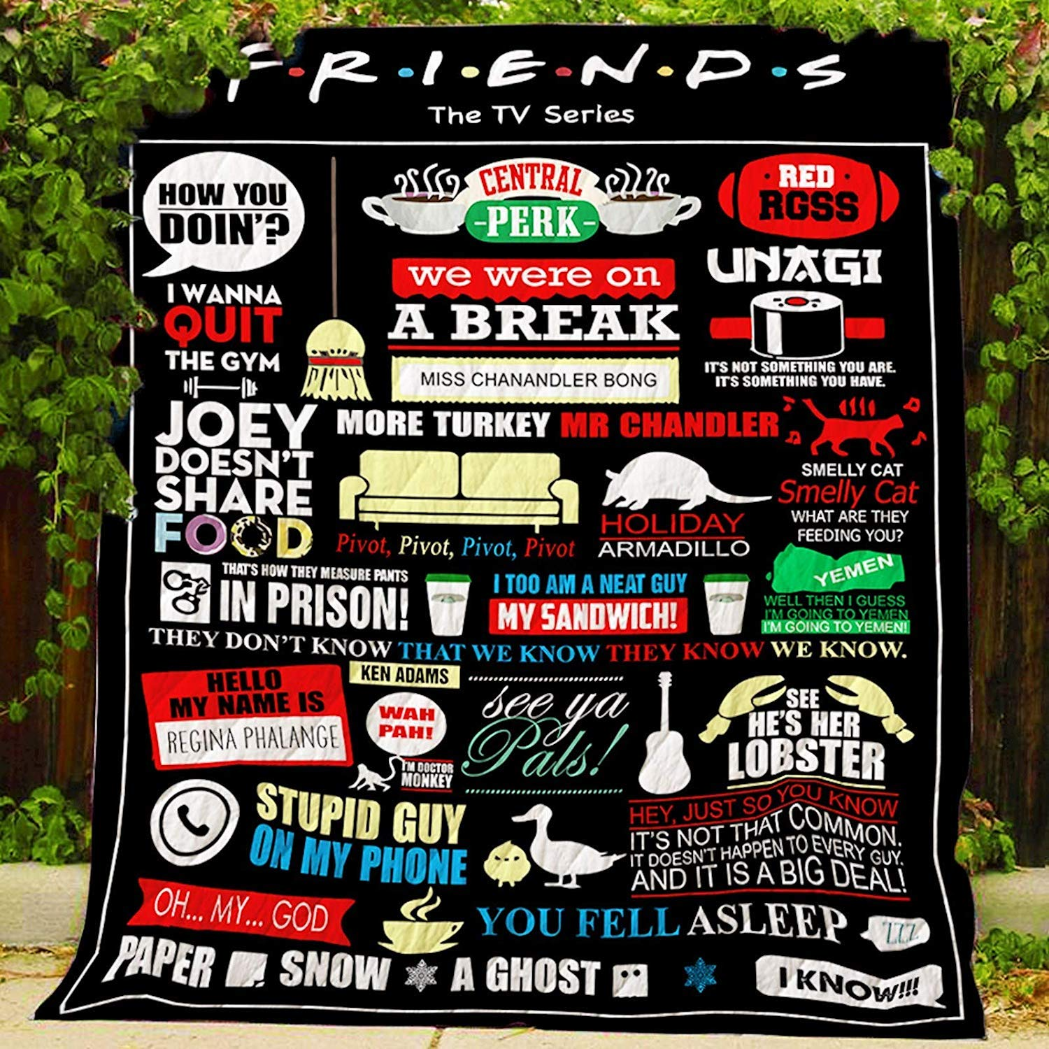3D Printed Quilt | F.R.I.E.N.D.S TV Series Camping Quilt | All-Season Quilts Comforters with Reversible Cotton | Blanket for Traveling, Picnics, Beach Trips, Concerts and Home