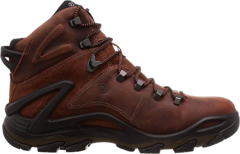 Terra Evo Multisport Outdoor Shoes