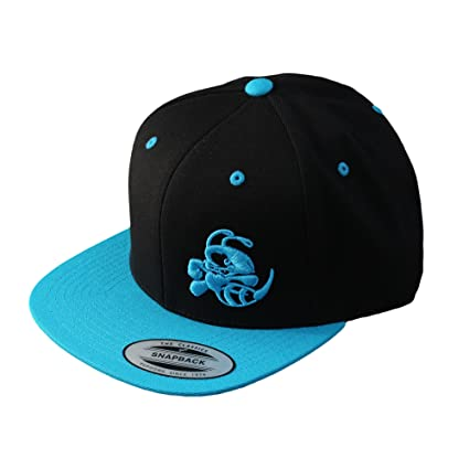 Amazon.com  Discraft Snapback Buzzz Two Tone Hat 4b396e899ada