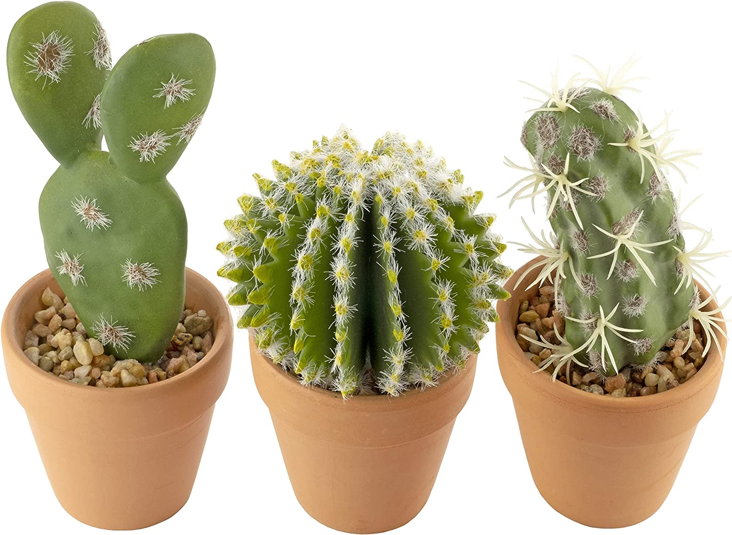 Artificial Succulent Plants - Set of 3 Cacti in Real Terracotta Pots for Home Decor – 6.7 inch/17cms Tall - Indoors and Outdoors - Living Room, Kitchen, Bathroom, Office, Desk, Bedroom