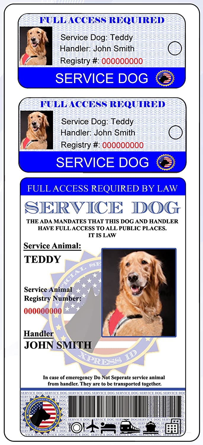Holographic Service Dog ID + 2 Key Tags | Includes Registration to National Dog Registry Xpress ID