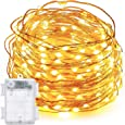 DecorNova 19.7ft 60-LED Battery Operated Starry String Lights with Timer and 3AA Battery Case, Copper Wire, Warm White