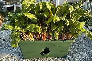 Garden Patch GP01GR-06 Grow Box