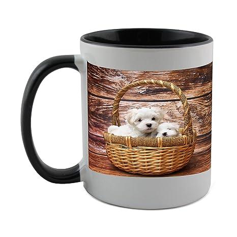 Taza con negro capa interior de perro, Malta, perro, dormir, Sweet