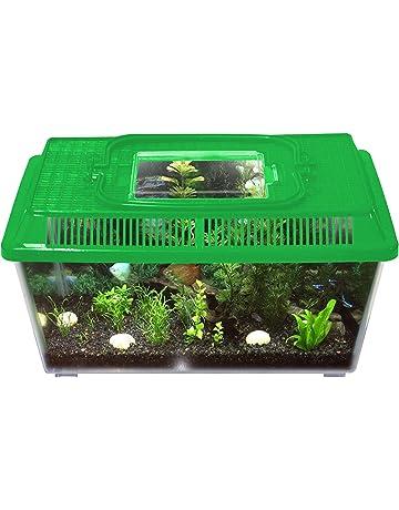 Terrariums Terrariums Accessories Pet Supplies Amazon Co Uk