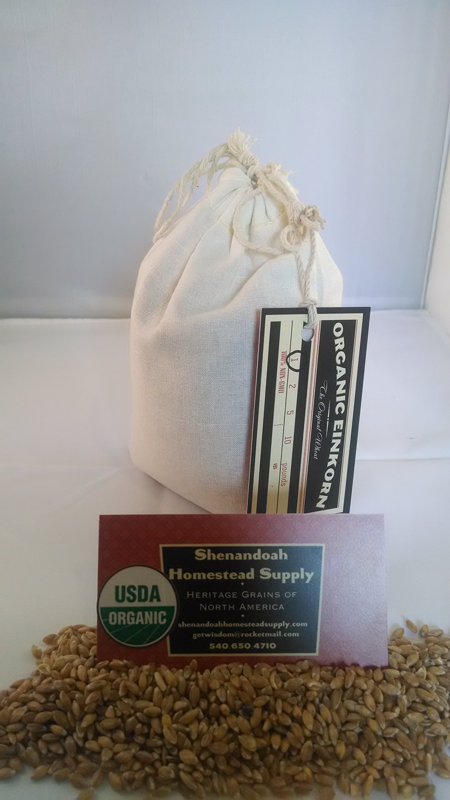 Amazon.com : 1 lb. Organic, Sprouted Einkorn Flour