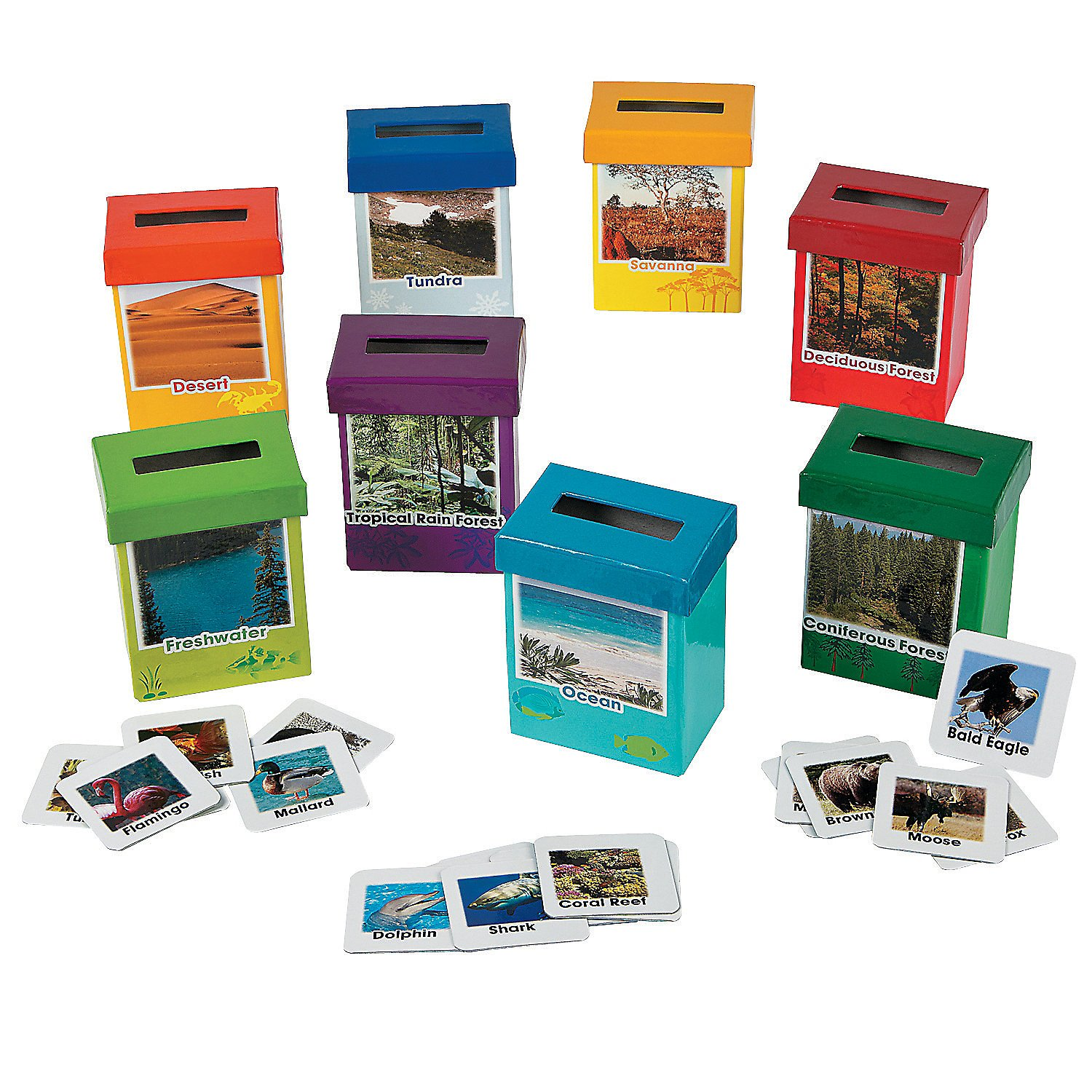 Fun Express Animal Habitat Sorting Boxes (8 Boxes Featuring Different Habitat with Photo and Facts) - Science Teaching Aids by Fun Express