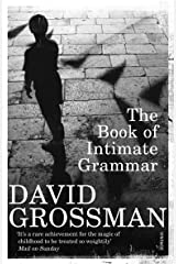 The Book Of Intimate Grammar Paperback