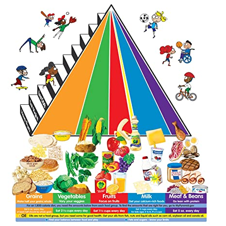 Amazoncom Little Folks Visuals Lfv22413 My Pyramid Different Food