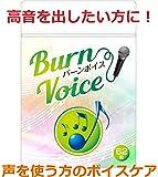カラオケ サプリ 高音 BURN VOICE (バーンボイス) リンゴ酸&マグネシウム シナモン ガラナ 声のケア サプリメント 62粒 (1袋)