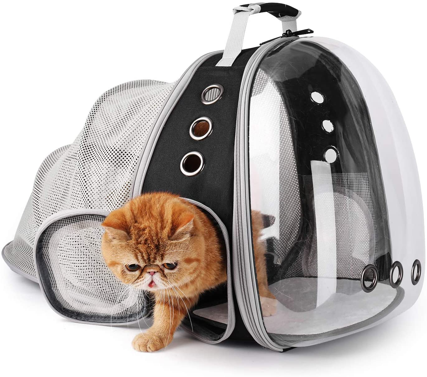 Lollimeow Pet Carrier Backpack, Bubble Backpack Carrier, Cats and Puppies, Airline-Approved, Designed for Travel, Hiking, Walking & Outdoor Use (Black-Expandable) : Pet Supplies