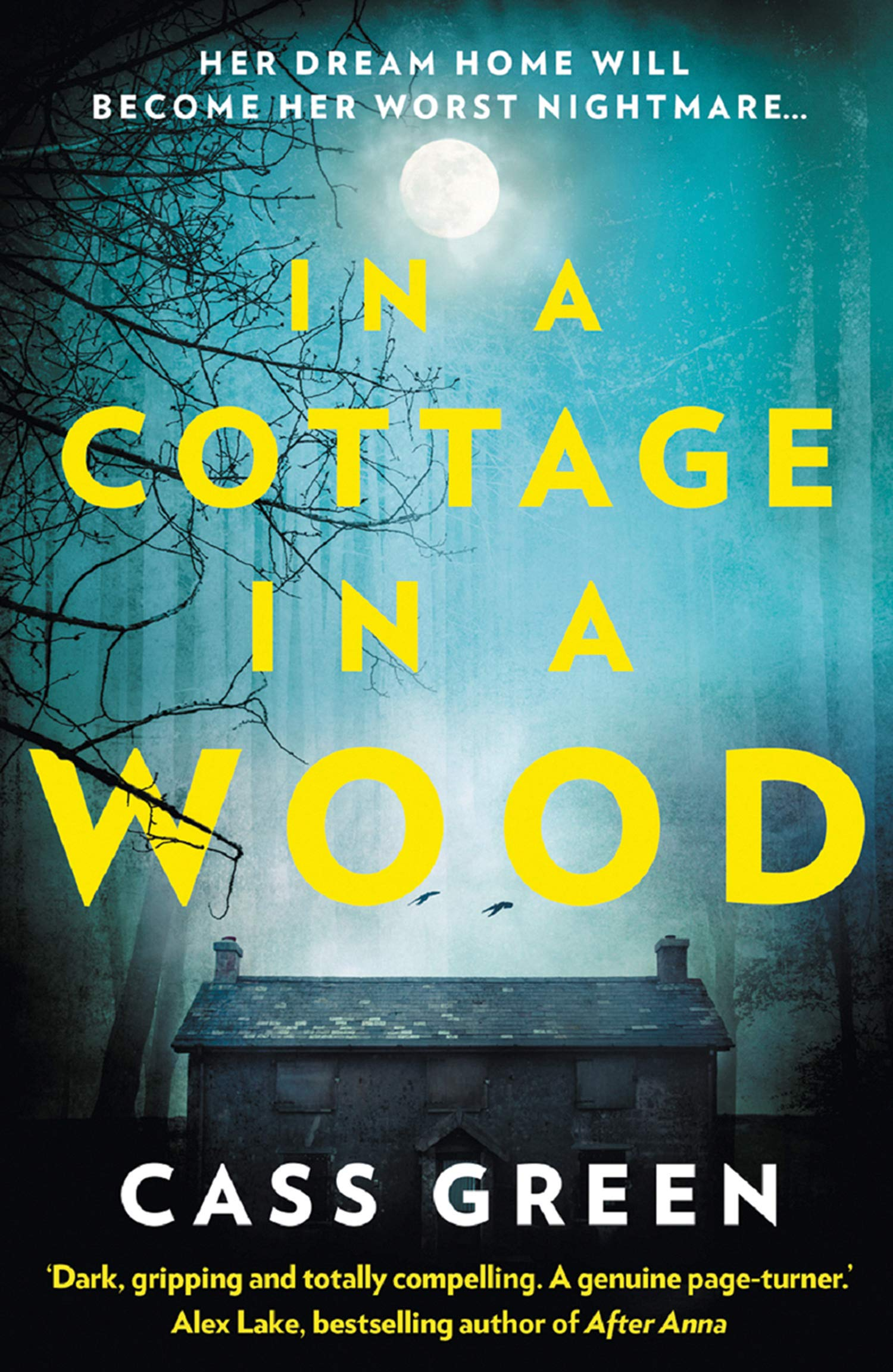 In a Cottage In a Wood The bestselling psychological