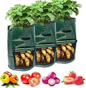NAMTSO『3 Packs 10 Gallons』Potato Grow Bags, Thickened 200GSM Plant Grow Bags with Flap and Reinforced Handles Aeration Fabric Pots for Onion, Fruits, Tomato, Carrot