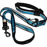 Kurgo 6 in 1 Quantum Leash, Hands Free Leash for Dogs, Running Belt Lead, Crossbody & Waist Belt Style, Reflective, Carabiner