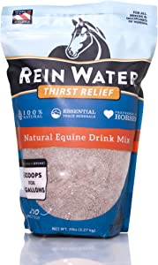REDMOND Equine, Rein Water, Natural Hydrating Electrolyte Mineral Mix for Horses