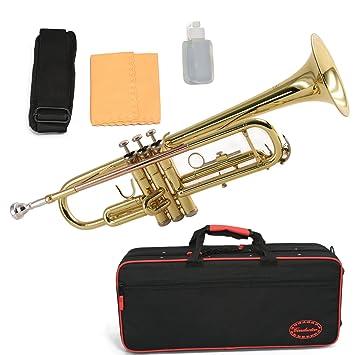 Trompeta de latón conductor - Serie II, con estuche de lujo ...