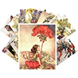 Carte Postale 24pcs Flower Fairy by Cecile Barker Vintage Illustrations