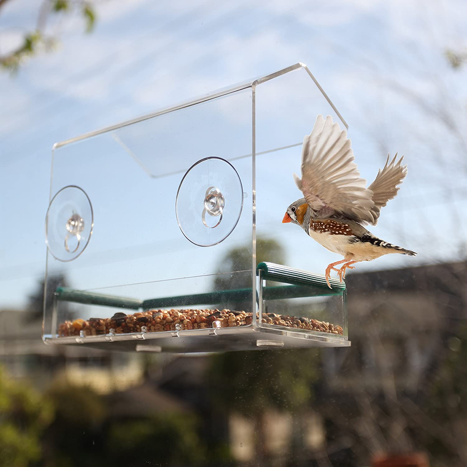 feeder window acrylic supply s buy feeders bird gardener dewdrop