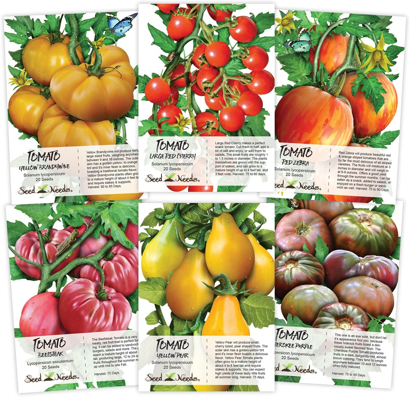 Seed Needs Multicolor Tomato Seed Packet Collection Non-GMO Seeds 6 Individual Packets