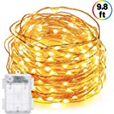 DecorNova 60 LED IP44 Waterproof Copper Wire String Lights with Timer and 3AA Battery Case, 9.8ft, Warm White
