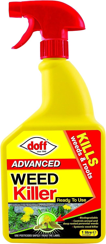 DOFF - Glifosato Herbicida Concentrado, 1 L: Amazon.es: Coche y moto