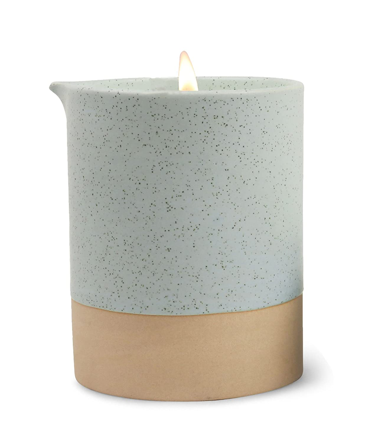 Paddywax Candles Mesa Collection Scented Soy Wax Blend Candle in Matte Speckled Ceramic 10-Ounce Cactus Flower & Matcha