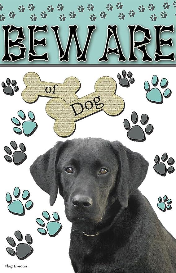 Amazon.com: Tenga cuidado con los perro negro Lab Funny ...