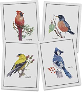 Twigs Paper - North American Birds Note Cards - Set of 12 Blank Cards (5.5 x 4.25 Inch) with 12 Envelopes - 100% EcoFriendly Stationery - Made In USA (6 Designs, 12 Cards Total)