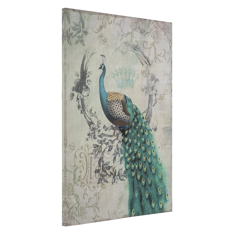 Amazon Yosemite Home Decor Peacock Poise II Multi Wall Art Posters Prints