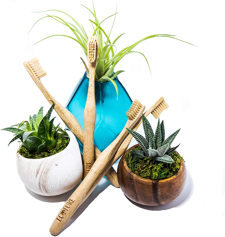 Ecoture - Cepillo de dientes de bambú biodegradable - Cepillo de ...