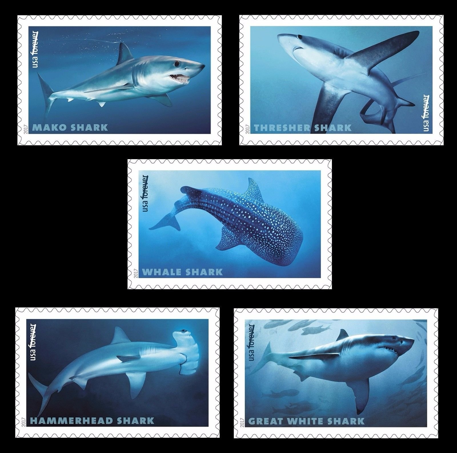 Sharks - USPS Forever Stamps Sheet of 20 - New 2017 Release