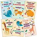 WOBBOX Baby Monthly Record 0-6 Months Growth and Milestones Cards - Set of 18
