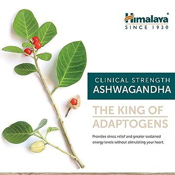 Himalaya High Strength Ashwagandha (Ginseng indio) Certificado por el USDA | Todo natural antiestrés, alivio de la ansiedad y potenciador de energía | 4,630 ...