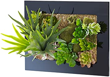 Tableau Végétal Avec Plantes Artificielles 31 X 25 Cm Amazonfr